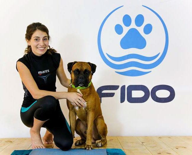 מרכז פידו - שיקום כלבים